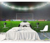 Фотообои мяч на стадионе
