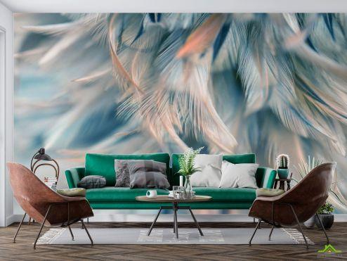 Фотообои перья по выгодной цене Фотообои Бирюзовые перья