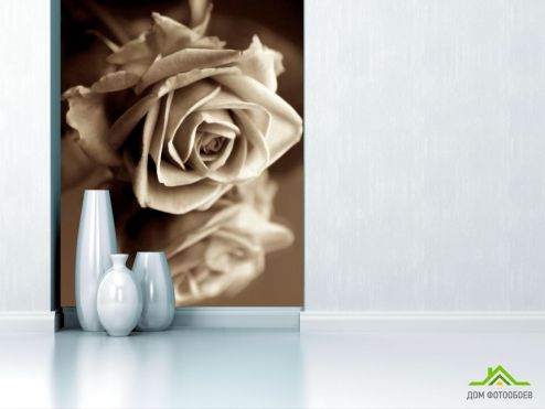 обои Цветы Фотообои Роза сепия