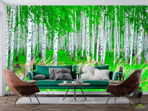 Фотообои Природа по выгодной цене Фотообои Березовая роща, лес