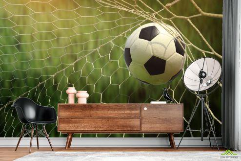 Фотообои Спорт по выгодной цене Фотообои мяч в воротах