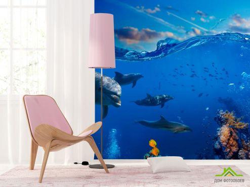 Дельфины Фотообои Дельфины в море купить