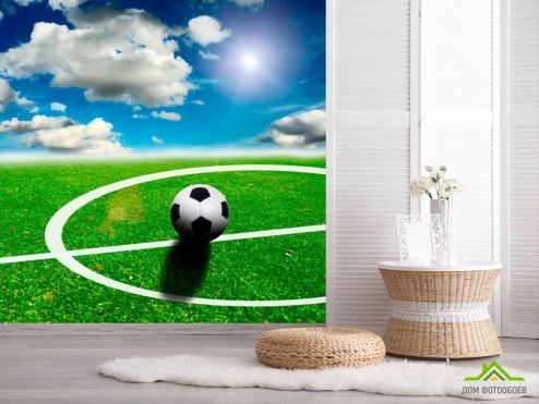 обои Спорт Фотообои Мяч на поле