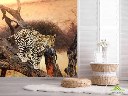 обои Животные Фотообои леопард на ветке