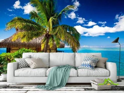 Пальмы Фотообои Пальма с хижиной