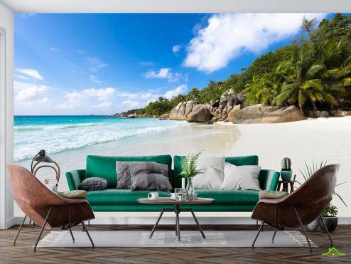 Фотообои холм с пальмами на берегу купить