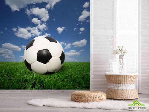 обои Спорт Фотообои мяч на траве