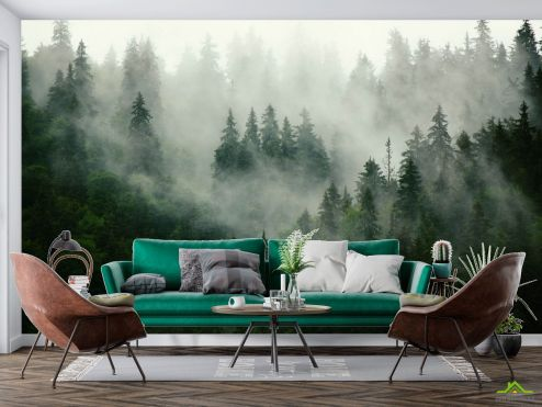 Фотообои Природа по выгодной цене Фотообои Туманный лес