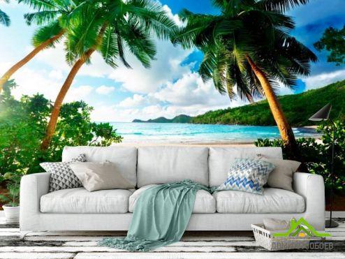 обои Пляж Фотообои  Пляж и пальмы