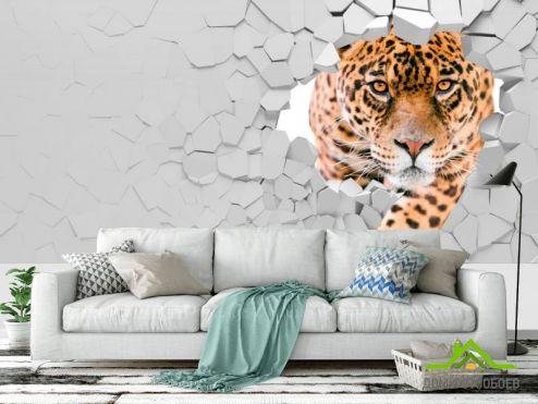 обои 3D объемные  Фотообои 3 д тигр