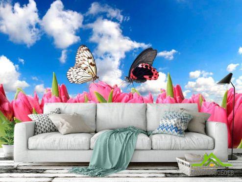 обои Цветы Фотообои Бабочки и розовые тюльпаны