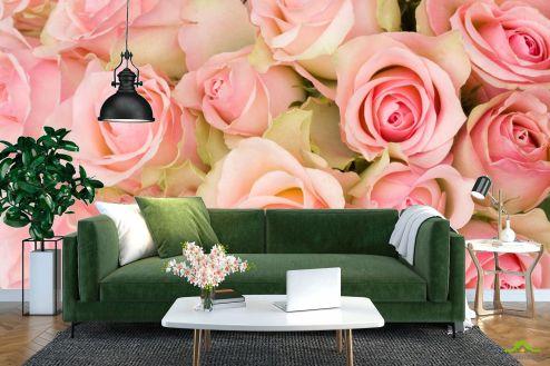 Розы Фотообои букет розовых роз