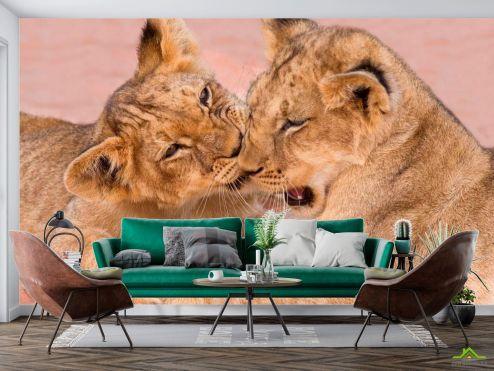 Животные Фотообои Игра тигрят