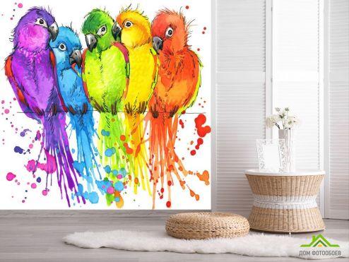обои Животные Фотообои пять разноцветных попугаев рисунок