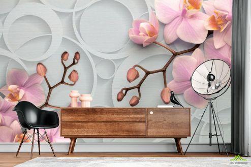 Серые  Фотообои Орхидея в кругах