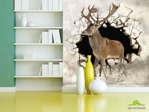 3Д обои Фотообои Олень из стены