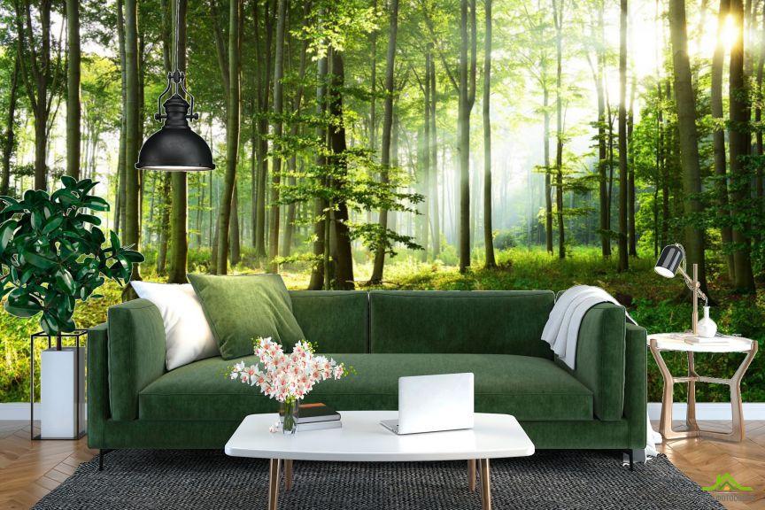 Фотообои Зелёные деревья