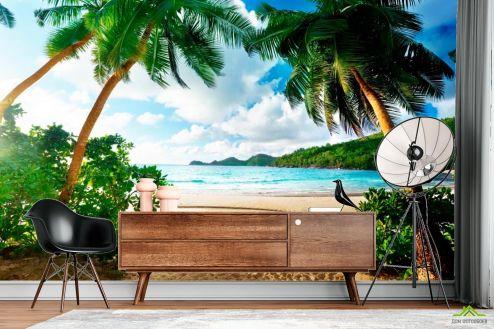 Пляж Фотообои  Пляж и пальмы