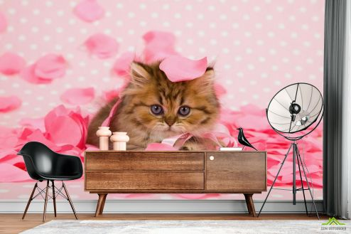 Коты Фотообои котёнок в лепестках роз