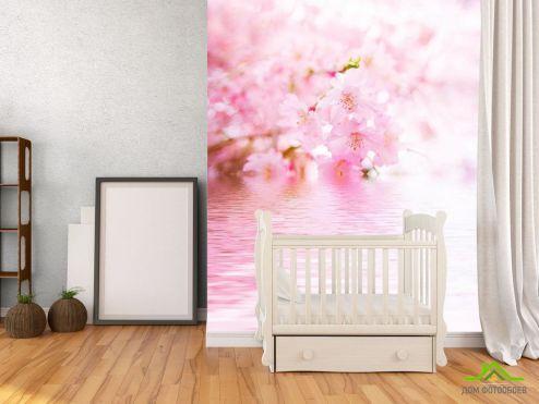 обои Цветы Фотообои Цветущая вишня