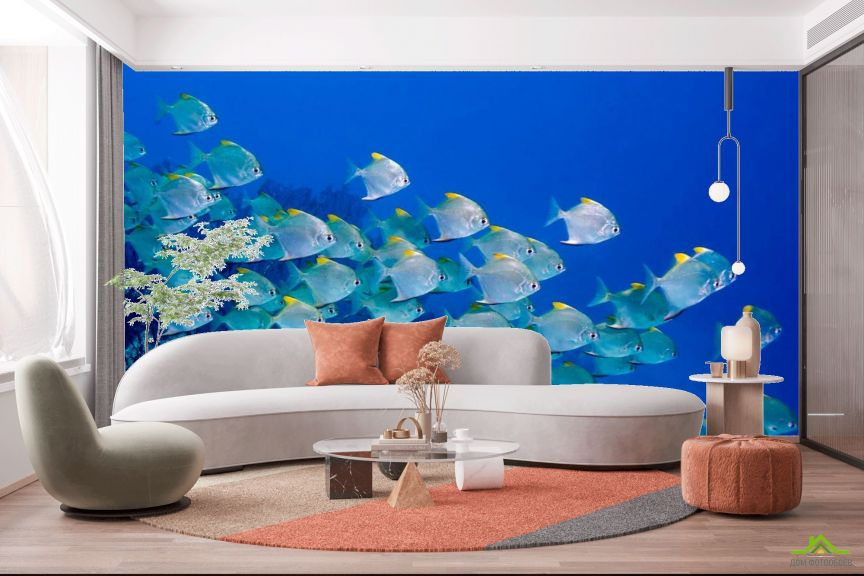 Фотообои Стая рыб
