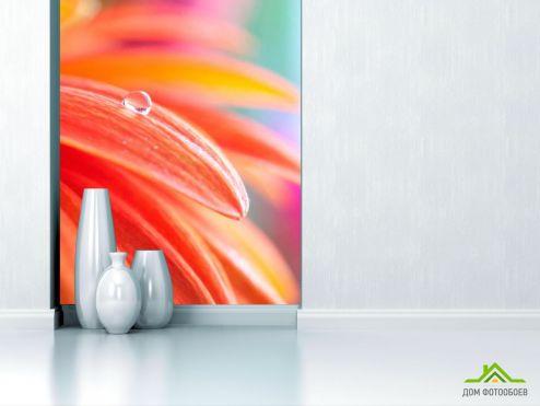 обои Цветы Фотообои Роса на гербере