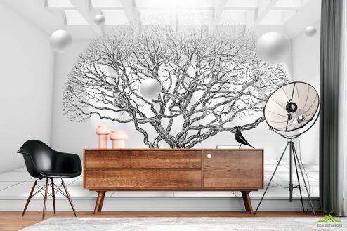 Черно-белые  Фотообои дерево 3д