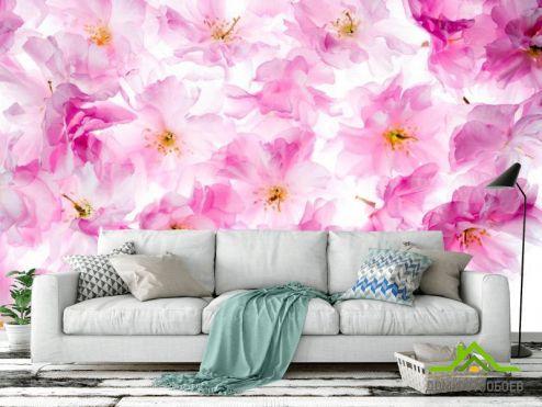 Розовые  Фотообои Акварельные цветы