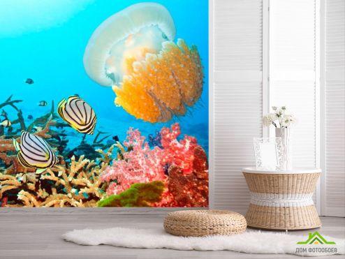обои Рыбы и море Фотообои Подводный мирок