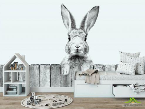 в детскую Фотообои Милый кролик