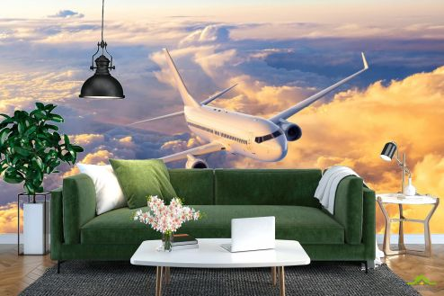 Фотообои Транспорт по выгодной цене Фотообои Самолёт в небе