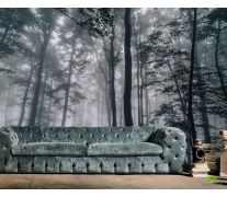 Фотообои Тёмный лес