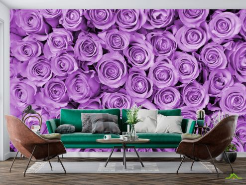 Цветы Фотообои Розы купить
