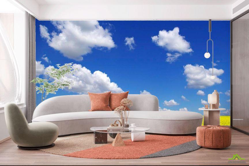 Фотообои Цвет и небо