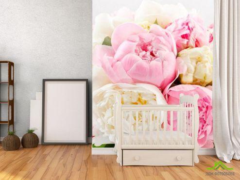 обои Цветы Фотообои Пионы белые и бежевые