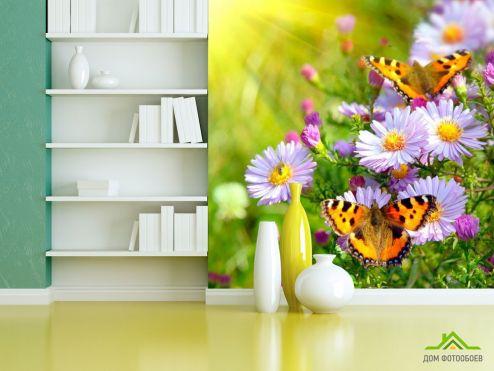 обои Насекомые  Фотообои Бабочки в цветах