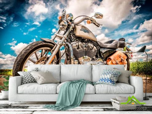 Мотоциклы Фотообои Мото