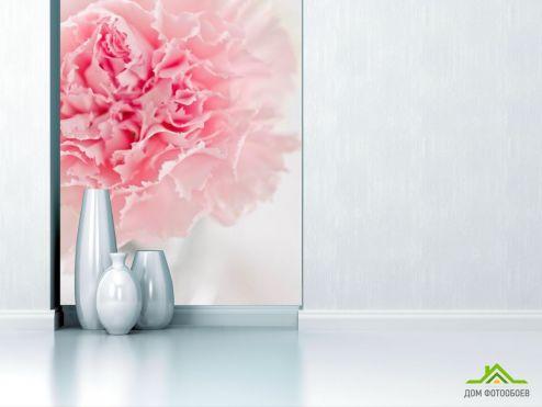 Пионы Фотообои Пион бледно-розовый
